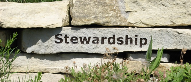 Become a Steward